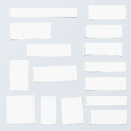 ruled paper: Pieces of ripped white, ruled, math notebook paper are stuck on gray background.