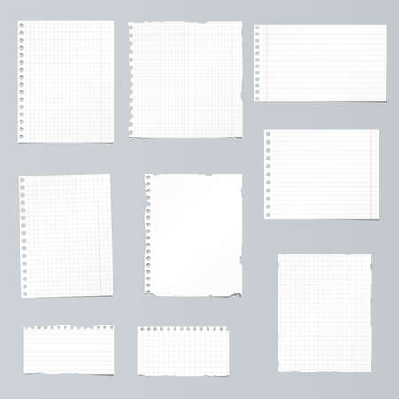 ruled paper: Set of ripped white, ruled, math notebook paper are stuck on gray background.