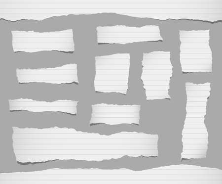 ruled paper: Pieces of ripped white ruled paper are stuck on gray background.