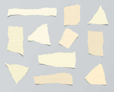 ruled paper: Pieces of ripped brown ruled paper are stuck on gray background. Illustration