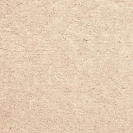 parchment texture: Brown parchment paper texture with space for text Stock Photo