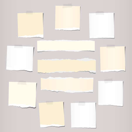 ruled paper: Pieces of white and beige torn note, notebook paper sheets stuck on grey background.