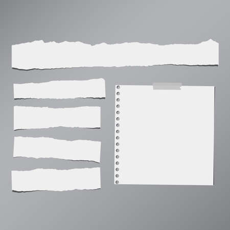note paper background: Pieces of white torn note, notebook paper sheets stuck on grey background. Illustration