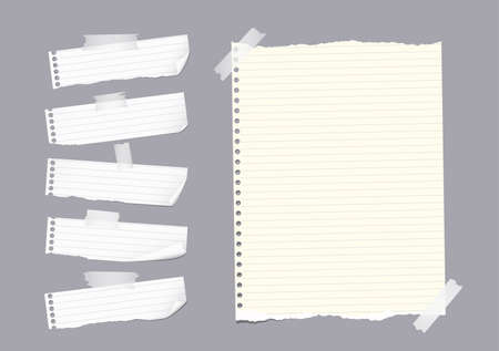 ruled paper: Ripped ruled note, notebook, copybook paper sheet, strips stuck with sticky tape on gray background