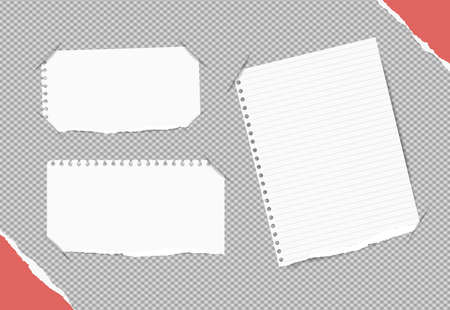 inserted: White blank, ruled notebook, copybook sheets inserted into gray squared background.