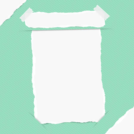 notebook paper background: Torn white blank note, copybook, notebook sheet inserted into green striped background with white ripped paper in corners