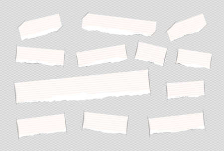 inserted: Pieces of torn white ruled note copybook, notebook strips inserted into squared cut paper