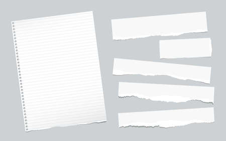 Ripped note, notebook, copybook paper sheets, strips, stuck on gray background.