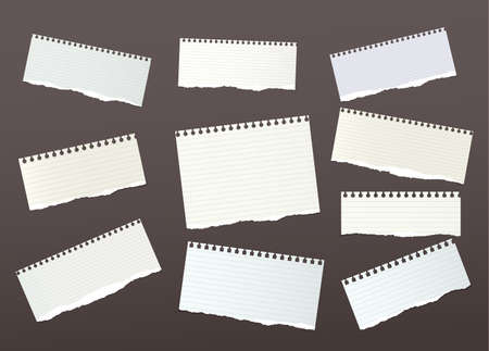 Pieces of ripped ruled, note, notebook, copybook paper strips. Illustration