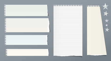 Ripped note, notebook, copybook vertical and horizontal paper strips with stars on grey background.