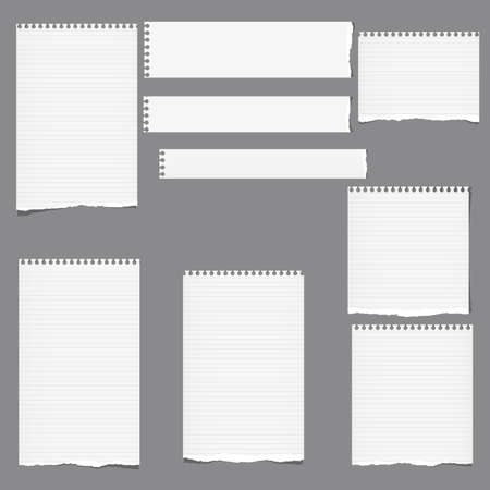 Ripped ruled note, notebook, copybook vertical and horizontal paper strips, sheets grey background.