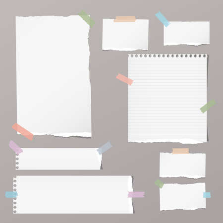Ripped blank, ruled note, notebook, copybook paper sheets stuck with colorful sticky tape on grey background.