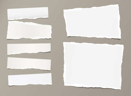 White ripped strips, notebook, note paper for text or message stuck on gray background.