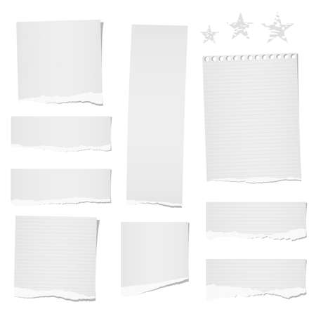 Torn ruled and blank note, notebook, paper strips, sheets for tex or message stuck on white background.