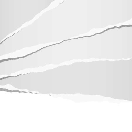 White horizontal ripped strips, note paper for text or message. Ilustração