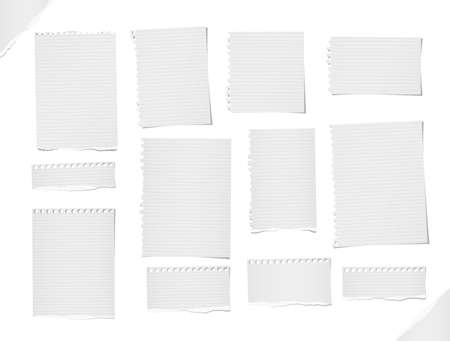 Ripped lined and blank note, notebook paper strips, sheets for text or message stuck on white background