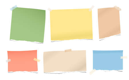 Pieces of torn colorful blank note, notebook paper for text stuck with sticky tape on white background.