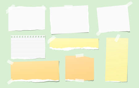 Colorful and white torn note, notebook paper pieces for text stuck on bright green background. Vector illustration.