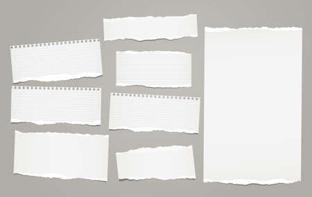 White lined torn note, notebook paper pieces for text stuck on gray background. Vector illustration. Ilustração