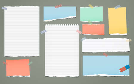 White and colorful lined torn note, notebook paper pieces for text stuck with sticky tape on green background. Vector illustration.