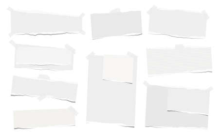 Note, notebook paper pieces with torn edge stuck on white backgroud. Vector illustration.