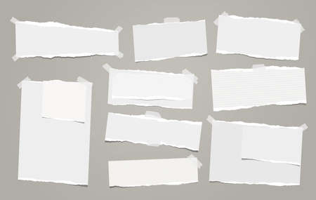 White note, notebook paper pieces with torn edge stuck on gray backgroud. Vector illustration.