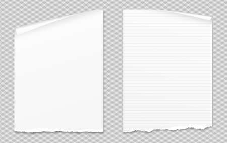Set of white torn notebook paper with curled corner for text or advertising message on gray squared background Vettoriali