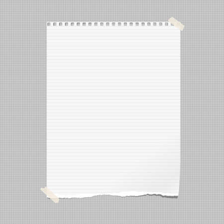 White note, notebook paper with torn edge stuck on gray squared backgroud. Vector illustration