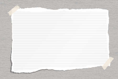 White torn lined note, notebook paper with torn edges and stains stuck with sticky tape on gray backgroud. Vector illustration.