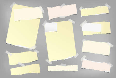 Colorful note, notebook paper with torn edges stuck on gray background. Vector illustration