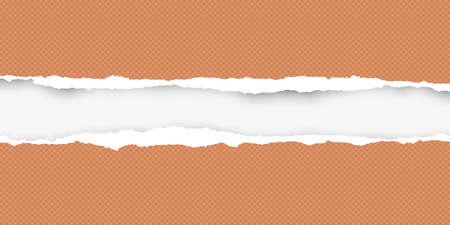 Squared ripped horizontal orange paper for text or message are on white background. Vector illustration. Illustration