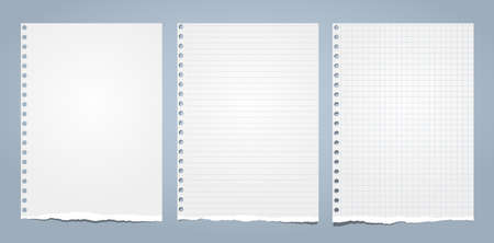 White ripped notebook paper, torn note paper for text or message are on blue background. Vector illustration.