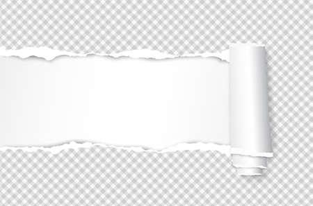 Foglio di carta quaderno bianco quadrato arrotolato e strappato per il testo. Illustrazione vettoriale Vettoriali