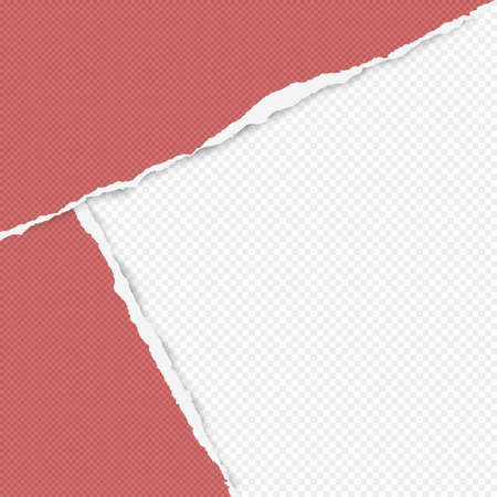 Torn squared red paper in corners are on white background with space for text. Vector illustration. Ilustração
