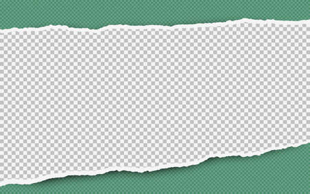 Torn squared white horizontal paper strip is on green background with space for text. Vector illustration. Ilustração