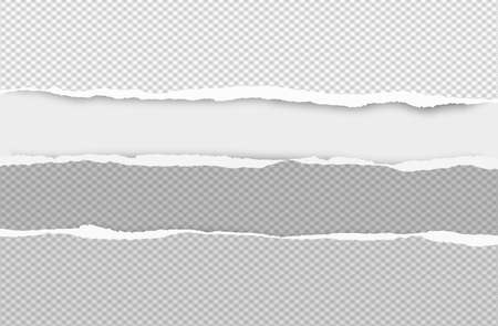 Set of torn squared grey horizontal paper are on white background with space for text. Vector illustration.