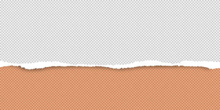 Torn white and orange horizontal paper, squared background with space for text. Vector illustration. Illustration