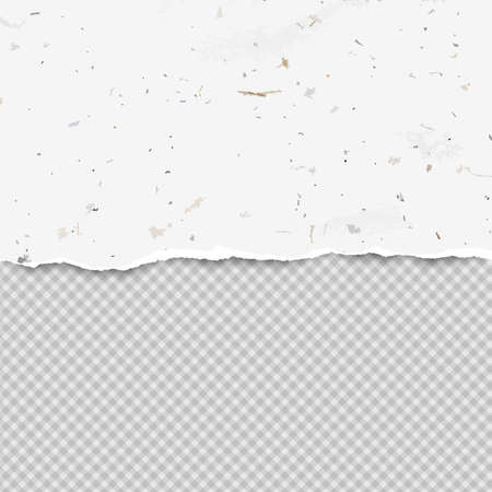 Piece of white torn recycled horizontal paper strip with squared background. Vector template illustration.
