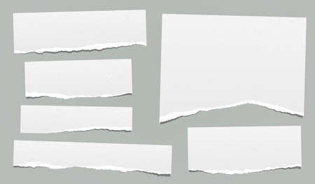 Ripped note, notebook grainy paper strips stuck on grey background. Vector illustration.