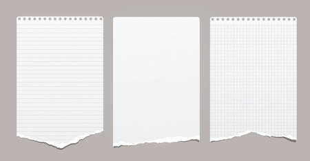 White grainy ripped, lined and squared notebook, note paper stuck on grey background. Vector illustration