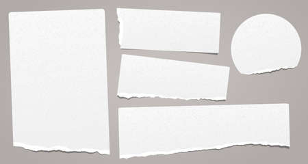 Set of torn note, notebook grainy paper stuck on grey background. Vector illustration.