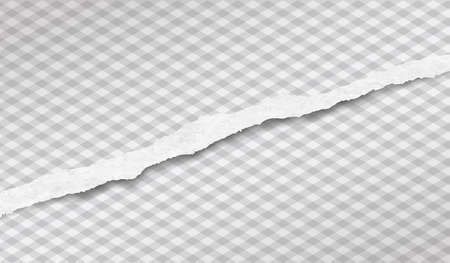 Torn white horizontal paper strip is on squared background. Vector illustration.