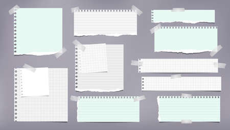 Ensemble de notes blanches et vertes déchirées, de bandes de cahier, de morceaux de papier doublés et carrés collés avec du ruban adhésif sur fond gris. Illustration vectorielle Vecteurs