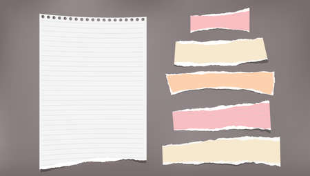Set of torn white lined and colorful note, notebook strips, paper pieces stuck on dark brown background. Vector illustration.