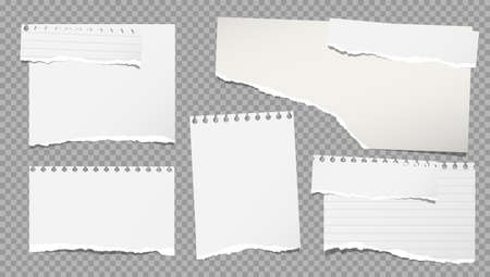 Set of torn white note, notebook paper pieces stuck on grey squared background. Vector illustration Иллюстрация