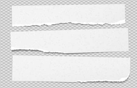 Torn white grainy note paper pieces stuck on grey squared background. Vector illustration