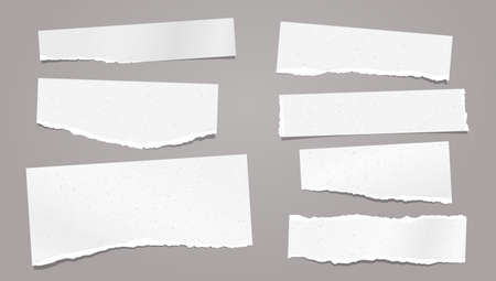 Set of torn white note, notebook paper strips and pieces with soft shadow stuck on grey background. Vector illustration Иллюстрация