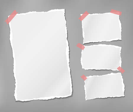 Torn white note, notebook paper pieces stuck with sticky tape on grey background. Vector illustration.