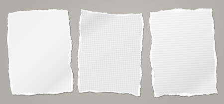 Torn white, squared and lined note, notebook paper pieces stuck on grey background. Vector illustration.