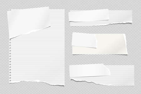 Set of torn white and lined note, notebook paper strips and pieces stuck on light squared background. Vector illustration